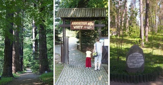 """Ogrody botaniczne w północnej Polsce. Oto miejsca idealne na jednodniową wycieczkę! Gdzie warto się udać? Podpowiadamy!Kliknij w kolejne zdjęcia i sprawdź szczegóły >>>Oto miejsca w kategorii """"must-see""""! Gdzie znajdziemy najpiękniejsze ogrody botaniczne w regionie? Całe szczęście - jest w czym wybierać!"""