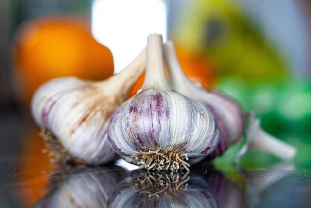 Co dzieje się z organizmem, gdy spożywamy czosnek? Choć w Polsce czosnek jest niezwykle popularny i lubiany, to nie zawsze zdajemy sobie sprawę, jakie niesamowite właściwości posiada i jak wpływa na nasze zdrowie i samopoczucie. Czosnek ma pozytywny wpływ na układ odpornościowy, obniża poziom cholesterolu we krwi i ciśnienie, wspomaga pracę mózgu a także jest bogatym źródłem przeciwutleniaczy. Działa przeciwbakteryjnie i przeciwgrzybiczo. Czosnek był znany ze swoich zdrowotnych właściwości już w starożytnym Egipcie, gdzie stosowano go na takie dolegliwości jak bóle głowy, ukąszenia czy problemy z sercem. Czosnek ma dobroczynny wpływ na nasz organizm i pomaga w wielu dolegliwościach, jednak równocześnie może zwiększać ryzyko niektórych chorób. Co tak naprawdę dzieje się z organizmem, gdy włączamy czosnek do diety? Eksperci wymieniają wiele skutków. Oto niektóre z najbardziej zaskakujących skutków ubocznych spożywania czosnku. Poznaj je w poniższej galerii >>>>>