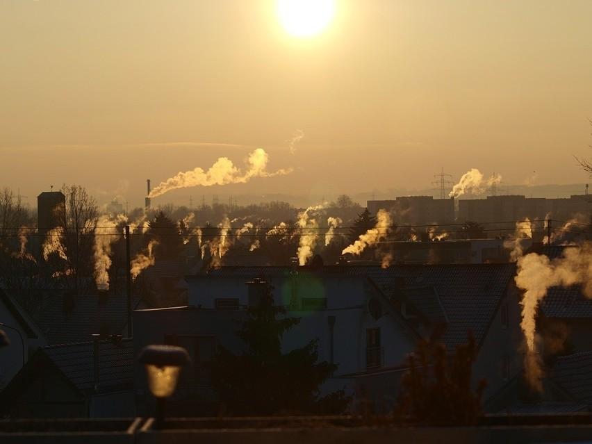 Im większy smog, tym większe zagrożenie koronawirusem -...