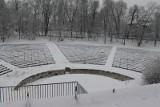 Czyn społeczny w amfiteatrze w Brzegu