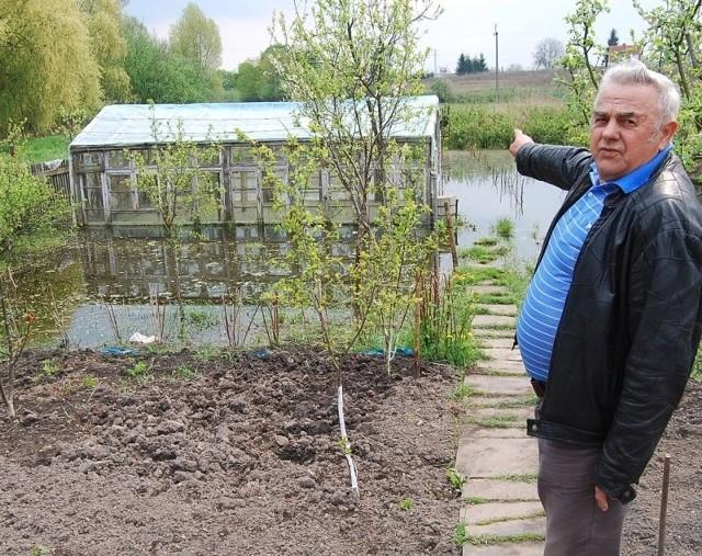- Proszę spojrzeć, połowa ogrodu zalana. Zaraz maj, a w foliaku stoi pół metra wody, w dodatku ze ściekami - mówi Jan Podbielski z Mieszkowic.