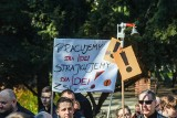 Strajk Nauczycieli 2019. Bez kółek zainteresowań, wycieczek i kina. Taka może wyglądać polska szkoła