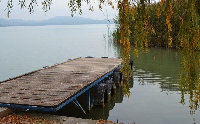 Najtańsze działki z jeziorem w regionie w kolejności od najtańszego do najdroższego. Zobacz kolejne zdjęcia. Przesuwaj zdjęcia w prawo - naciśnij strzałkę lub przycisk NASTĘPNE