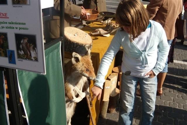 Mamo, co mu się stało w łapkę - pytały dzieci na widok lisa-kuternogi ze stoiska leśników