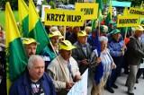 Poznań: Działkowcy protestowali pod Urzędem Wojewódzkim [ZDJĘCIA, FILM]