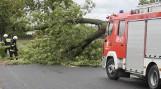 Wichura w Wielkopolsce: Połamane drzewa, zerwane dachy i linie energetyczne. Prawie 1000 interwencji wielkopolskich strażaków