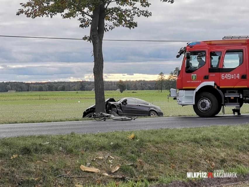 Do tragicznego wypadku na drodze nr 303 doszło w sobotę, 17 października, po godz. 14. Między Chobienicami a Wojciechowem (pow. wolsztyński) kierowca BMW śmiertelnie potrącił rowerzystkę. Przejdź dalej i zobacz, co stało się z kierowcą --->