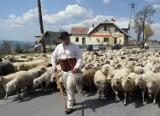 Górale z całych Karpat przyjadą do Istebnej na III Zjazd Karpacki