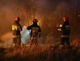 SZPROTAWA. Od pożaru trawy zapalił się dom. Trzy osoby zostały ranne