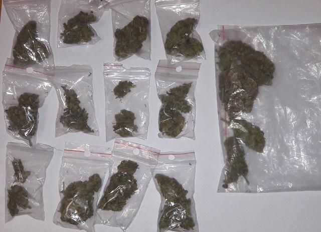 Ostrów Maz. Dzikie kąpieliska i marihuana. Ostrowscy policjanci znaleźli prawie 20 gramów suszu roślinnego