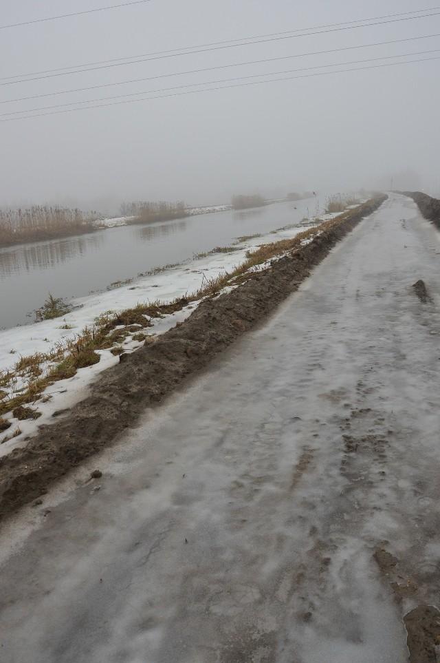 Budowa ścieżki w Borku Szlacheckim