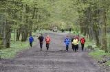 Bieganie w dobie Covid- 19. Jogging bez maseczki możliwy w parkach, lasach, ogrodach, zieleńcach i na plantach
