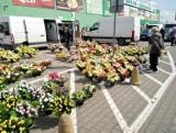 Giełda przy Andersa. Pogoda dopisała, więc białostoczanie ruszyli na zakupy. Głównie warzyw i kwiatów [zdjęcia]