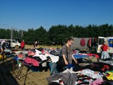 Używana odzież na giełdzie w Sandomierzu. Mnóstwo stoisk! Zobacz, co można było kupić [ZDJĘCIA]