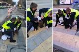 """Przepychanka z policją podczas Strajku Kobiet. """"Złapał mnie jak psa za sierść"""". Zobacz wideo"""