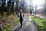 Park Śląski w jesiennej odsłonie. Warto wybrać się tu z rodziną lub pospacerować z kijkami ZDJĘCIA