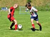 Gwardia Summer Cup dla rocznika 2012 w Koszalinie [ZDJĘCIA]