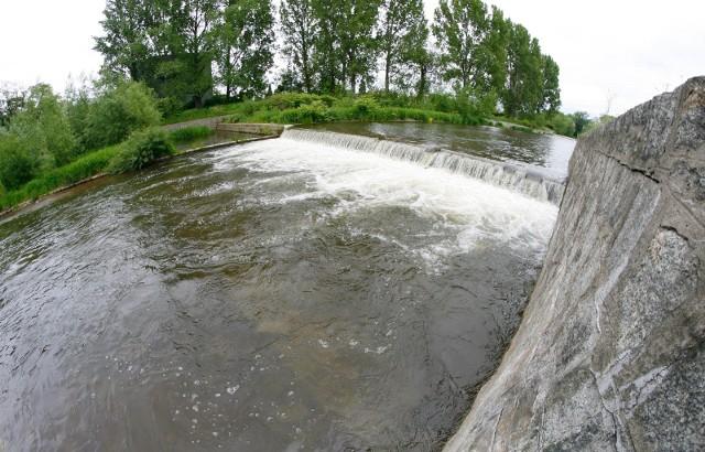 Rzeka Bystrzyca w Świdnicy