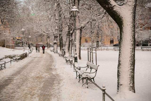 W niedzielę 24 stycznia wysłuchamy prelekcji o krakowskich Plantach