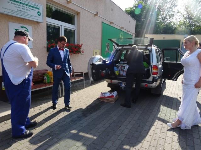 Monika i Michał Nowakowie przyjechali do schroniska zaraz po kościele. Przywieźli psom i kotom prezenty