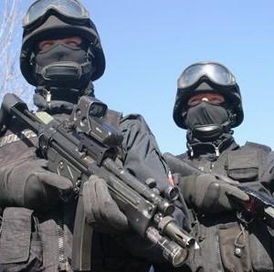 To fachowcy od trudnej roboty. Zatrzymują handlarzy narkotyków, sprawców napadów z bronią, przestępców ściągających haracze, odbijają zakładników, chronią VIP-ów oraz zajmują się ładunkami wybuchowymi.
