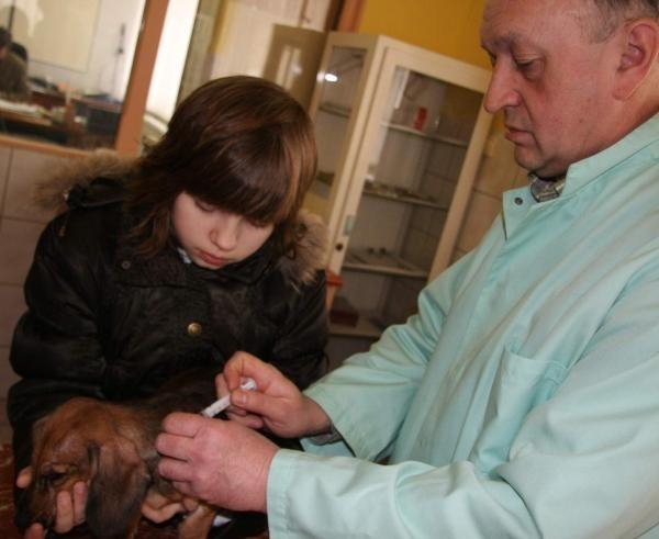 Pies Pikuś jak tylko wyzdrowieje będzie miał identyfikator. Na zdjęciu Angelika, właścicelka psa i lekarz Janusz Murzyński.