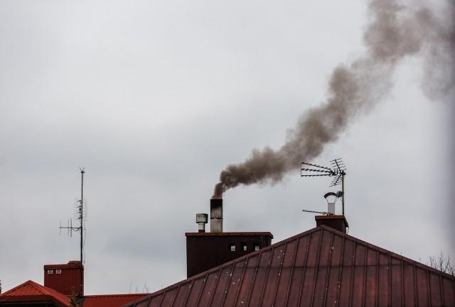 Czy całkowity zakaz palenia węglem i drewnem, to dobry pomysł?