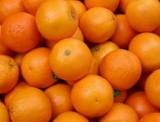 Pakość. W Wielkanocny Poniedziałek będą kulać pomarańcze