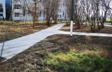 Kraków. Kiedyś był beton, a teraz coraz więcej drzew, są już alejki. Nowy park w Czyżynach [ZDJĘCIA]
