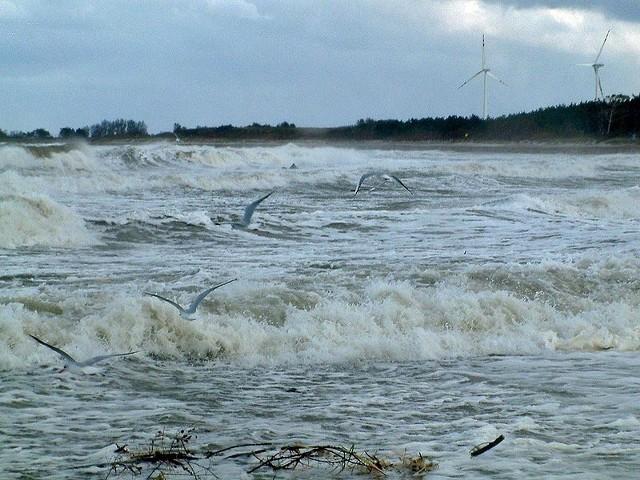 Sztorm w DarlówkuGaleria zdjec - sztorm w Darlówku. Zdjecia nadesląne przez internaute.