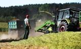 Rolnicy liczą straty po suszy. Do wtorku można składać wnioski o odszkodowanie
