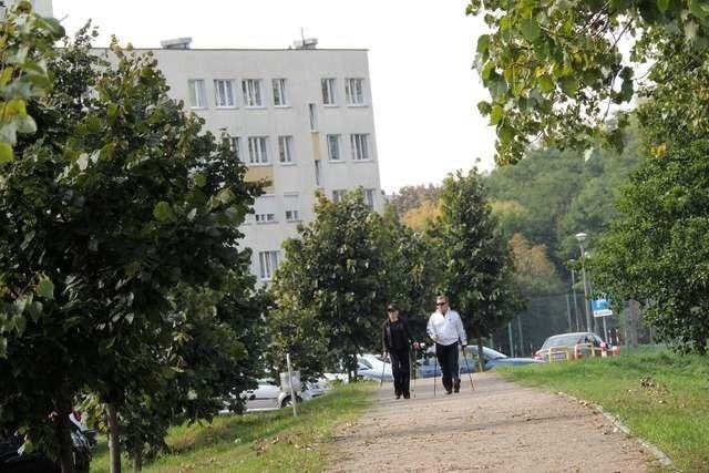 Mieszkańcy nie są zadowoleni z wykonania ścieżki, na odcinku od ul. Rydygiera do Rakowicza. Problemem jest przede wszystkim zła nawierzchnia oraz brak ławek