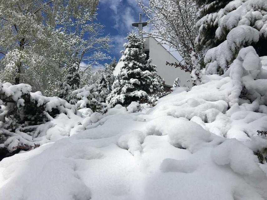 Śnieg w Beskidach w maju. Zimni ogrodnicy sprawdzili się. Zobaczcie zdjęcia. Ładna zima tej wiosny