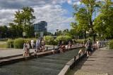 Bydgoszcz promuje się na Onecie - grzybiarze nie będą zadowoleni