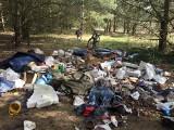 Wielka hałda śmieci w lesie w gminie Sulechów. Ich właściciela poszukuje Straż Miejska