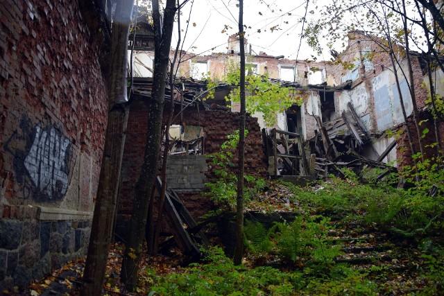 Pałac w Kamnicy pomnikiem wstydu. To teraz niebezpieczne miejsce i darmowa baza materiałów