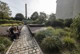Poznań: Skwer na Chwaliszewie to najlepiej zaprojektowana przestrzeń na świecie! Zobacz, jak się prezentuje