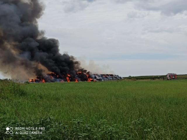 Kolejny pożar w powiecie kaliskim. Tym razem płonie stóg słomy złożony z bel w Tykadłowie w gminie Żelazków. Na miejsce skierowano 7 jednostek straży pożarnej.