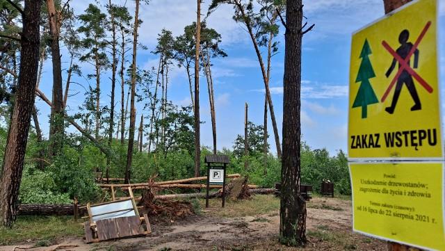 Trwa szacowanie szkód, udrożnianie dróg i uprzątanie powalonych drzew