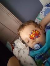 Nie udało się uratować oka Kornelka z Wielkiego Klincza. Lekarze w USA musieli usunąć oko