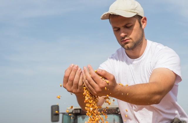 Co rolnik musi, a co powinien ubezpieczyć?Każdy rolnik musi wykupić obowiązkowe ubezpieczenie OC w związku z posiadaniem gospodarstwa rolnego. Chroni ono nie tylko rolnika, ale również osoby pozostające we wspólnym gospodarstwie oraz inne osoby pracujące w gospodarstwie rolnym.