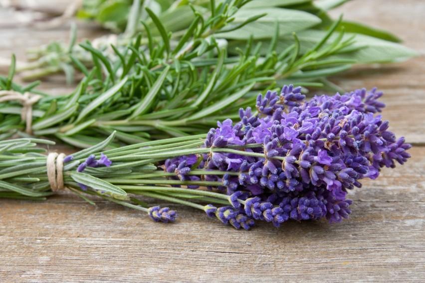 Ładnym zapachem w domu można oczarować gości i domowników,...