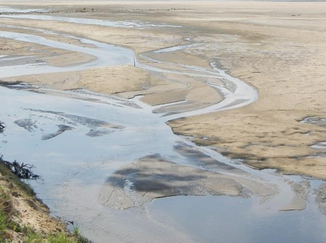 Aby bronić się przed suszą, w regionie trzeba retencjonować wodę, budować sztuczne zbiorniki, jazy, zastawki. Ale trzeba też zapewnić ciągłość biologiczną wód, czyli zadbać o przepławki dla ryb i innych organizmów wodnych