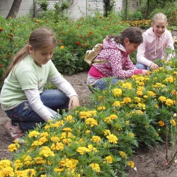 Monika Komainda, Karolina Kobylańska i Magda Kuczera obiecały, że będą się opiekować ogrodem.