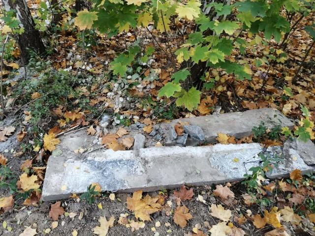 Pani Małgorzata jest zdania, że stara część cmentarza przy ul. Wrocławskiej nie jest należycie sprzątana