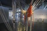 Sto tysięcy dolarów od japońskiej artystki dla Muzeum Włókiennictwa w Łodzi