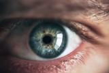 """""""Żaluzje molekularne"""" w siatkówce ludzkiego oka. Niezwykłe odkrycie lubelskich naukowców"""