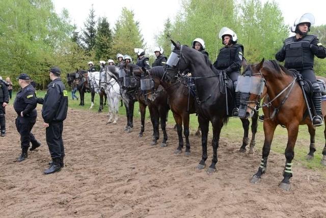 Policja konna w Poznaniu zdaje egzaminy. Funkcjonariusze i rumaki