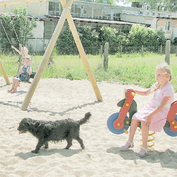 Z placu zabaw bez płotu korzystają nie tylko dzieci, ale także psy