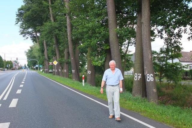 Drzewa rosną wzdłuż drogi odkąd pamiętają najstarsi mieszkańcy wioski. - Dlatego będziemy o nie walczyć - mówi Jan Karpa. - Jeśli kierowcy jadą przepisowo, to one groźne nie są.